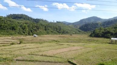 ChiangRai_56