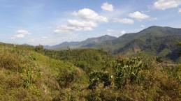 ChiangRai_60