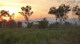Chiangmai2_78