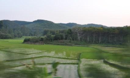 Nong Khiao_22