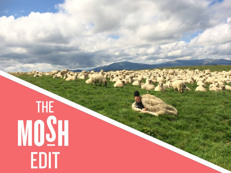 The MOSH Edit