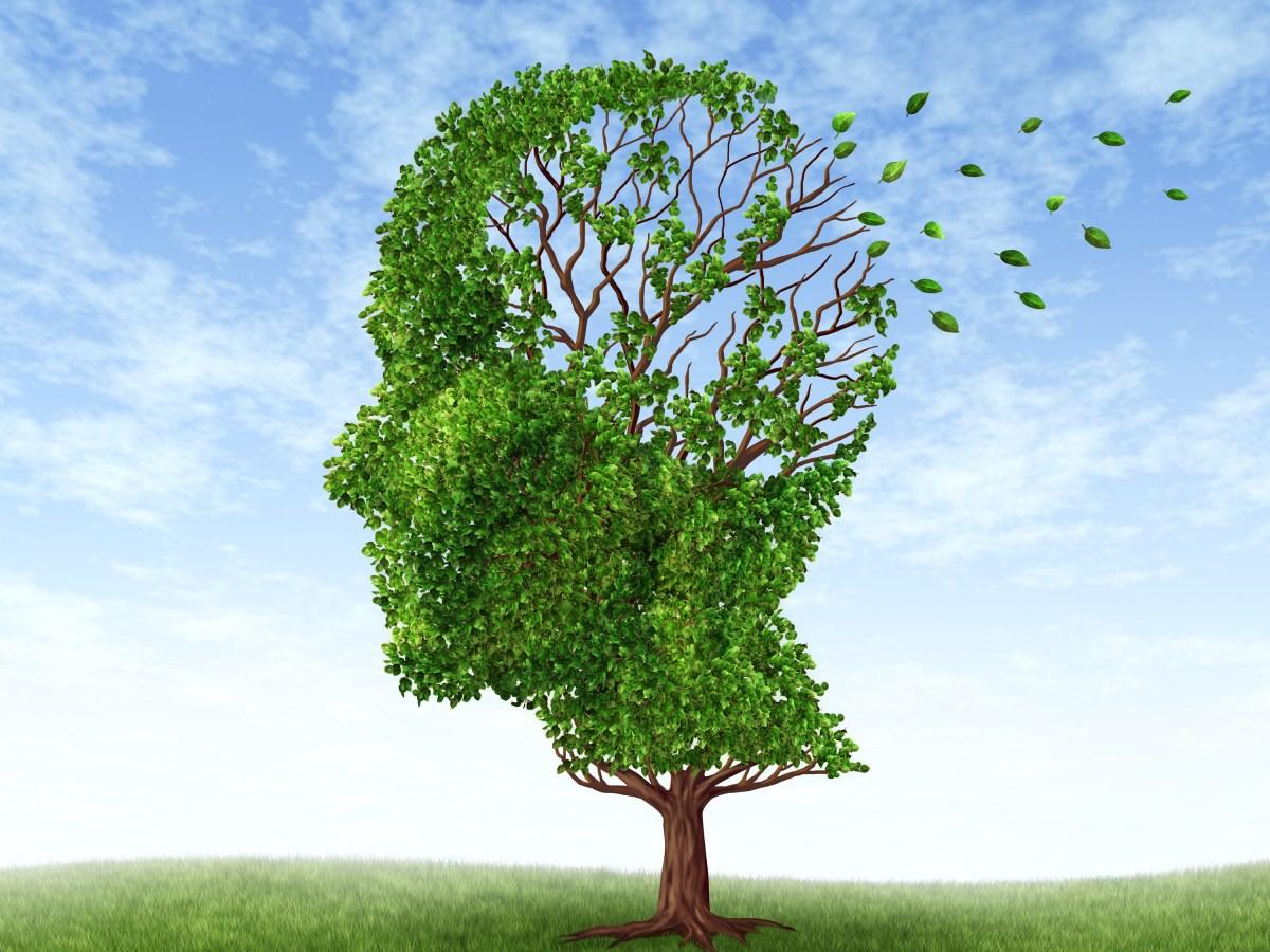 Сенильная деменция альцгеймеровского типа.