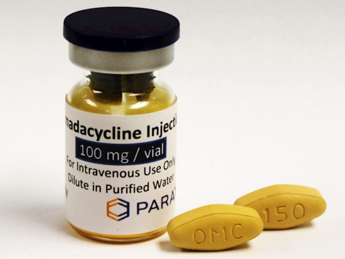 Новый антибиотик омадациклин готовится к регистрации