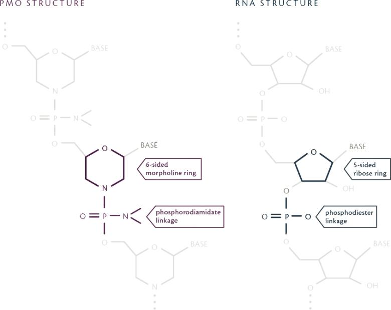 «Эксондис 51»: лекарство против мышечной дистрофии Дюшенна