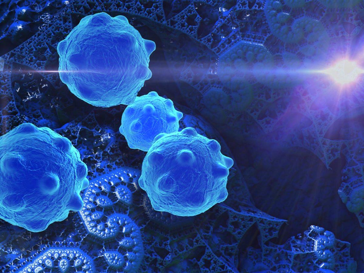 CAR-T-клетки против множественной миеломы