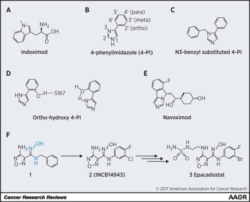 Химическая структура IDO1-ингибиторов и промежуточных соединений. Изображение: Cancer Research, 77 (24), pp. 6795-6811, December 2017.