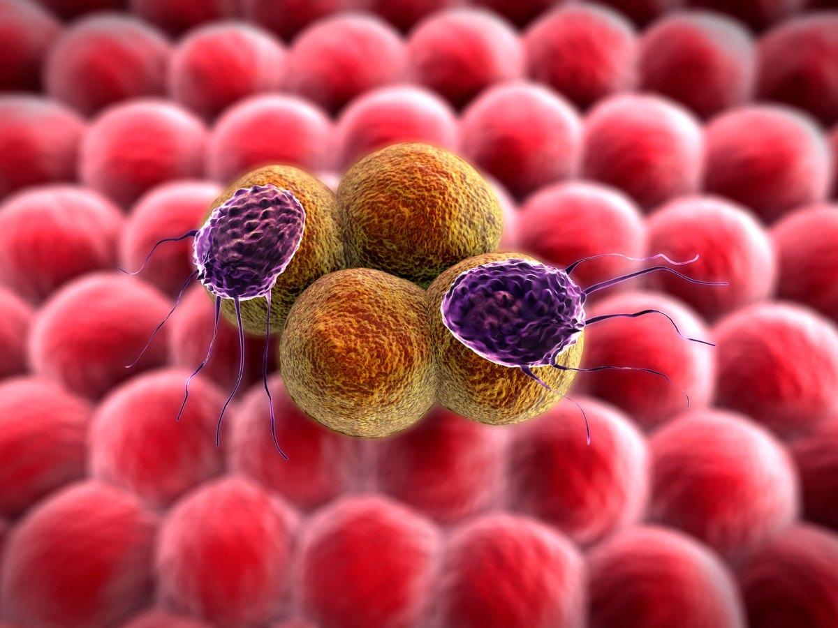 Gilead станцует раковую пляску синтетической летальности