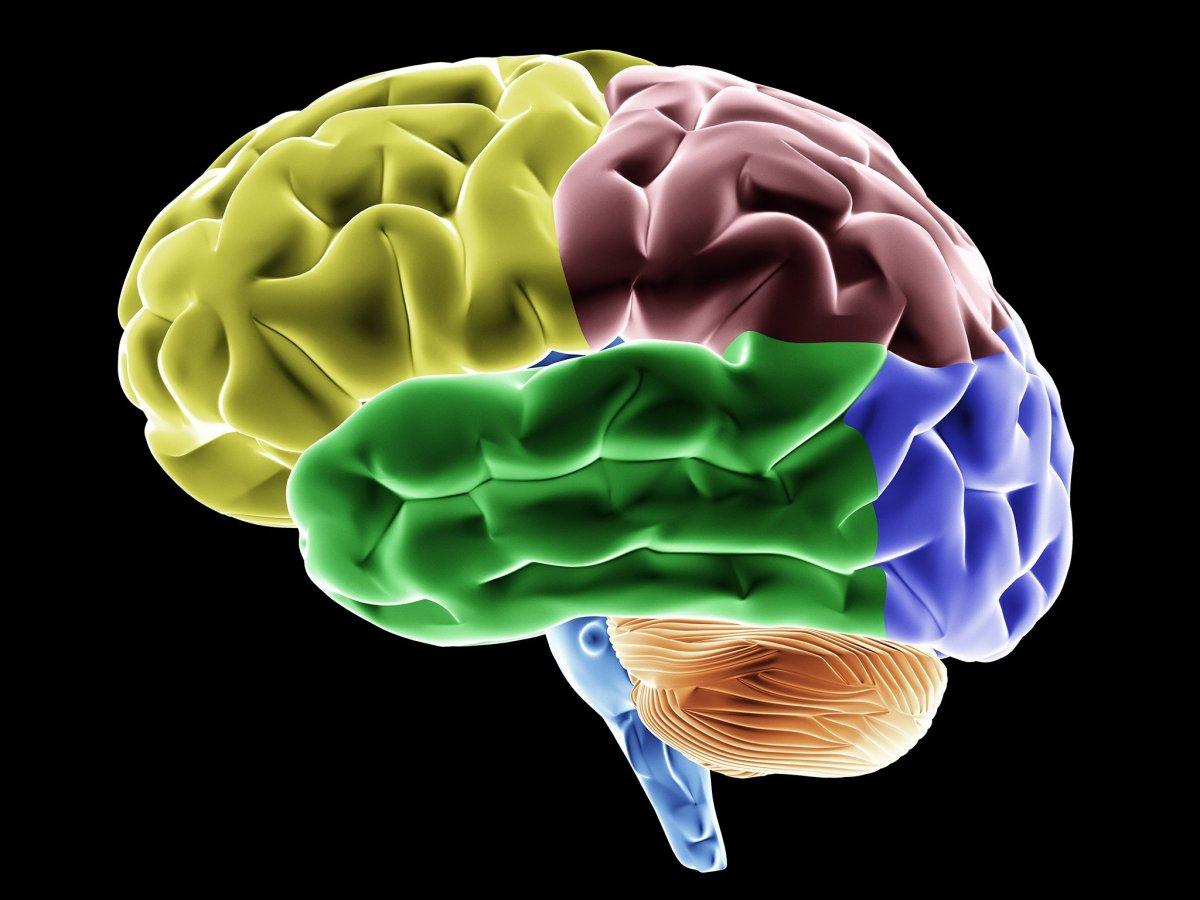 Alector: микроглиальная иммунотерапия против болезни Альцгеймера