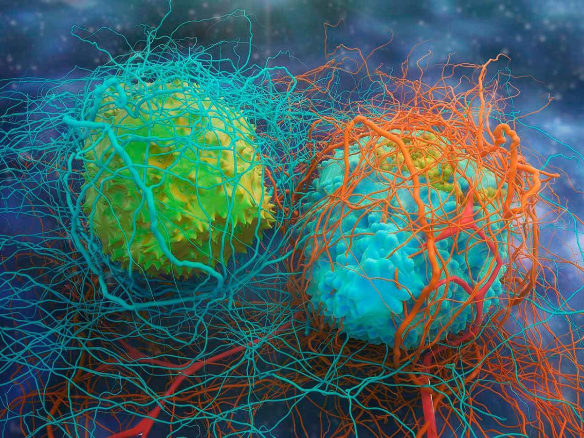 Harpoon Therapeutics: новая модальность иммуноонкологического лечения