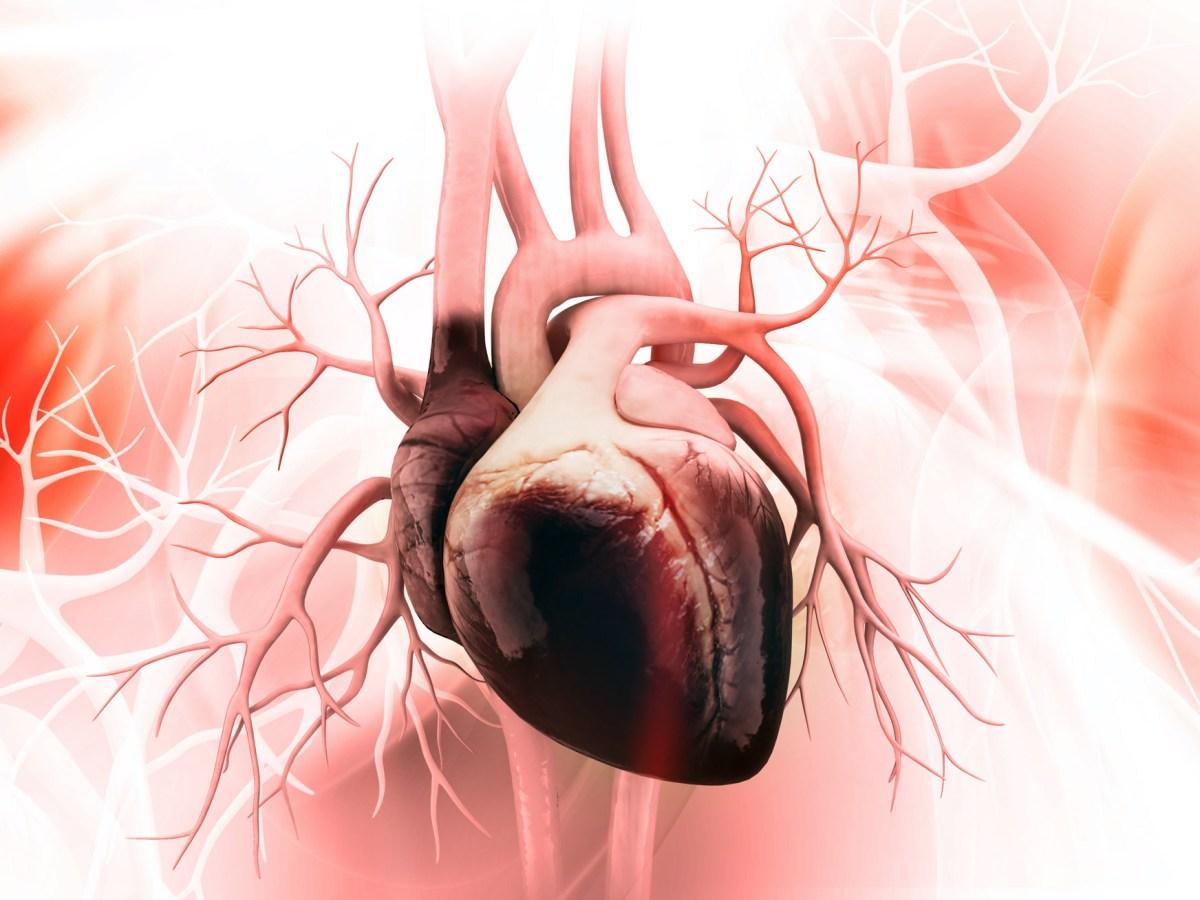 Верицигуат: предполагаемая новая терапия хронической сердечной недостаточности