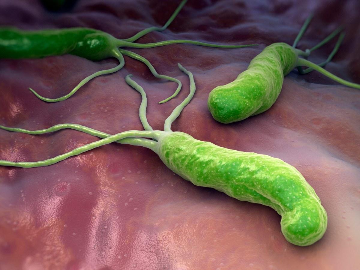 «Талисия»: новая высокоэффективная схема эрадикации Helicobacter pylori