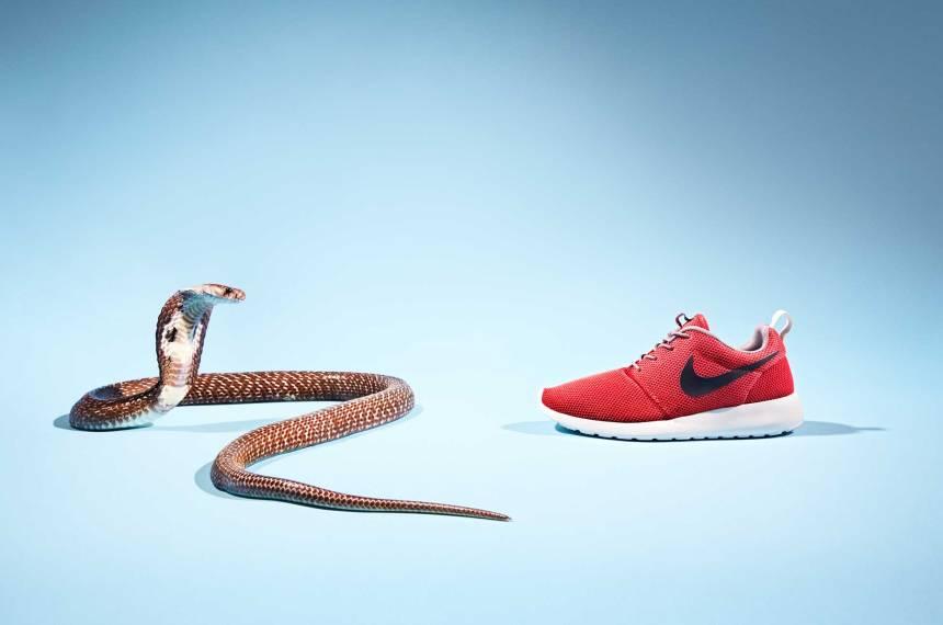 200_Sneakers_JosephFord_Cobra_01