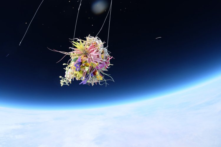 18space-cruz-slide-SCHL-jumbo