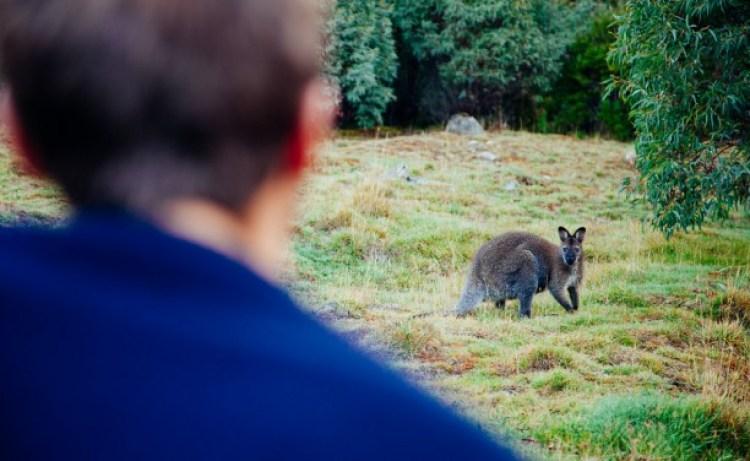 Tasmania Free Dating Site