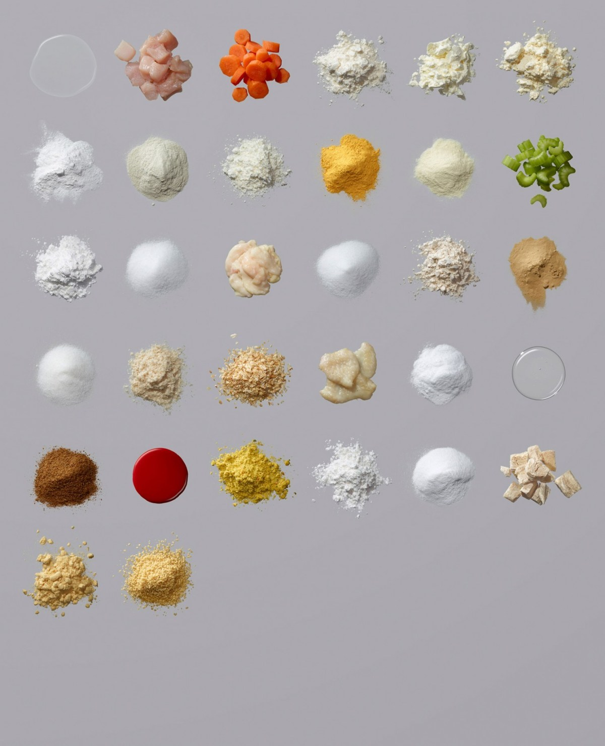 Campbell's Soup Deconstructed