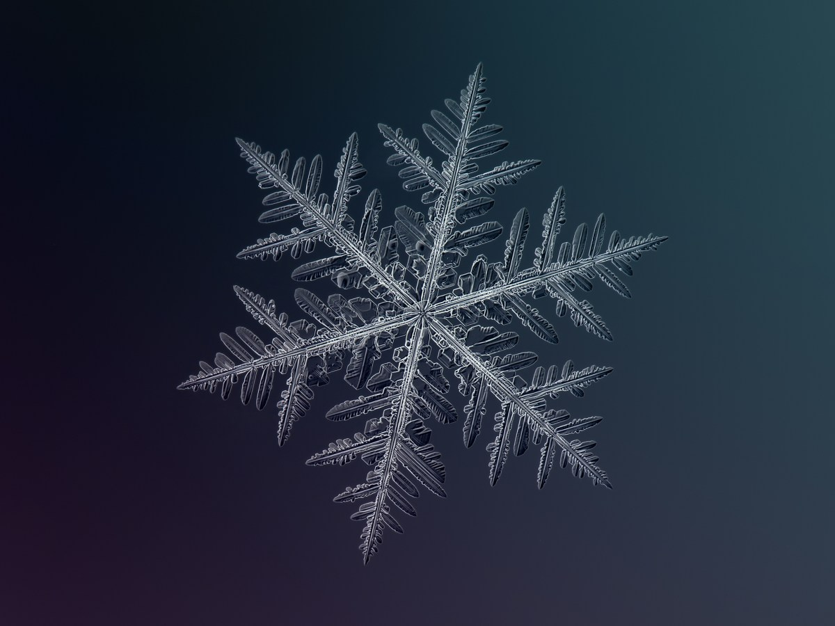 snowflake in detail