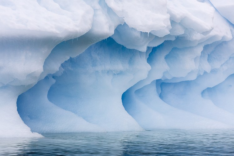 antarctica blue soul 6