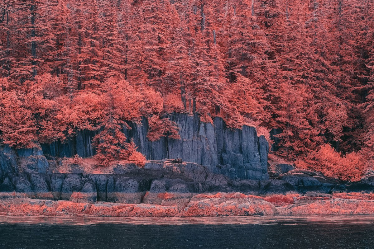 infra landscape moss and fog 4