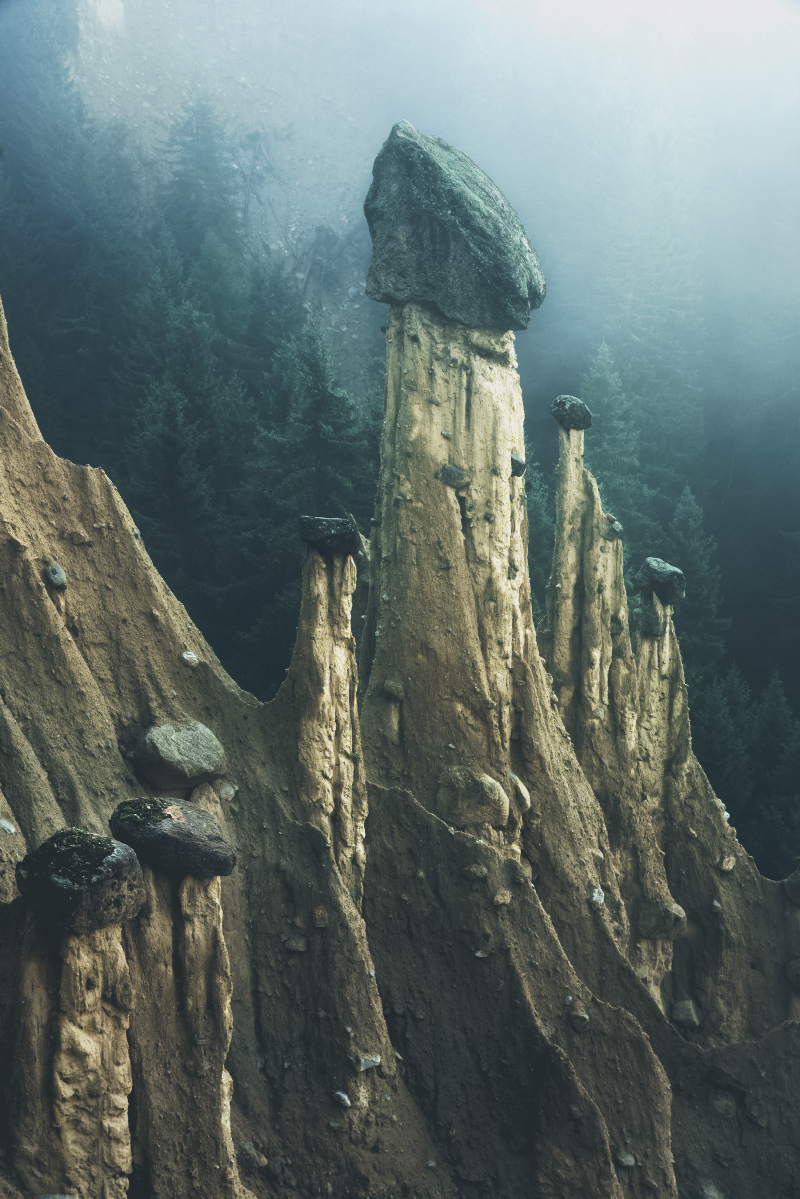 kilian alps landscape moss and fog5