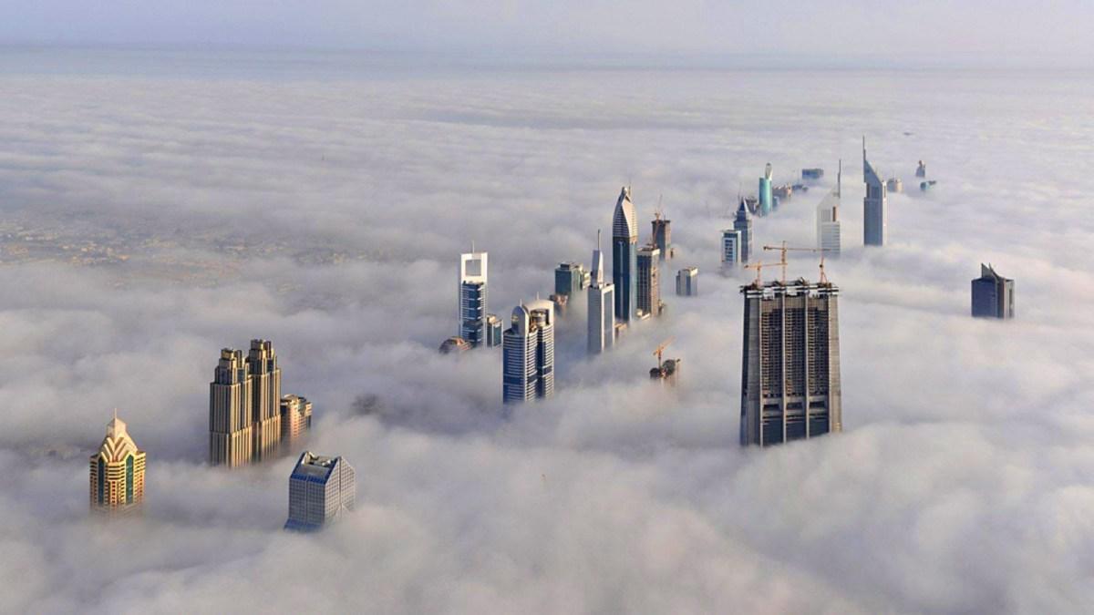 moss and fog skyscrapers hero