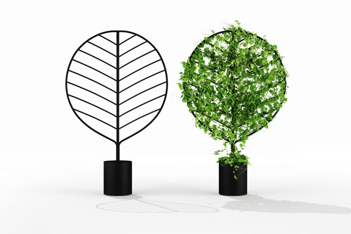 Botanical-Planter-Screens-Acacia-moss-and-fog-4