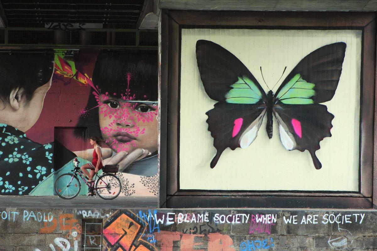 butterfly murals moss and fog 2