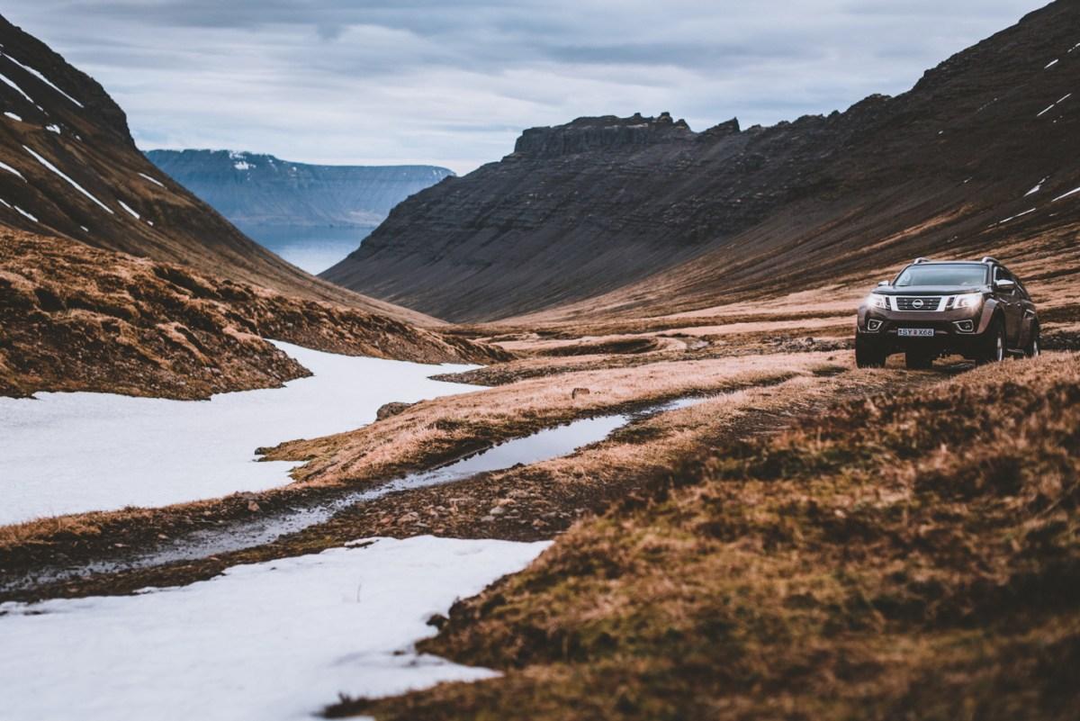 westfjords-iceland-moss-and-fog-14