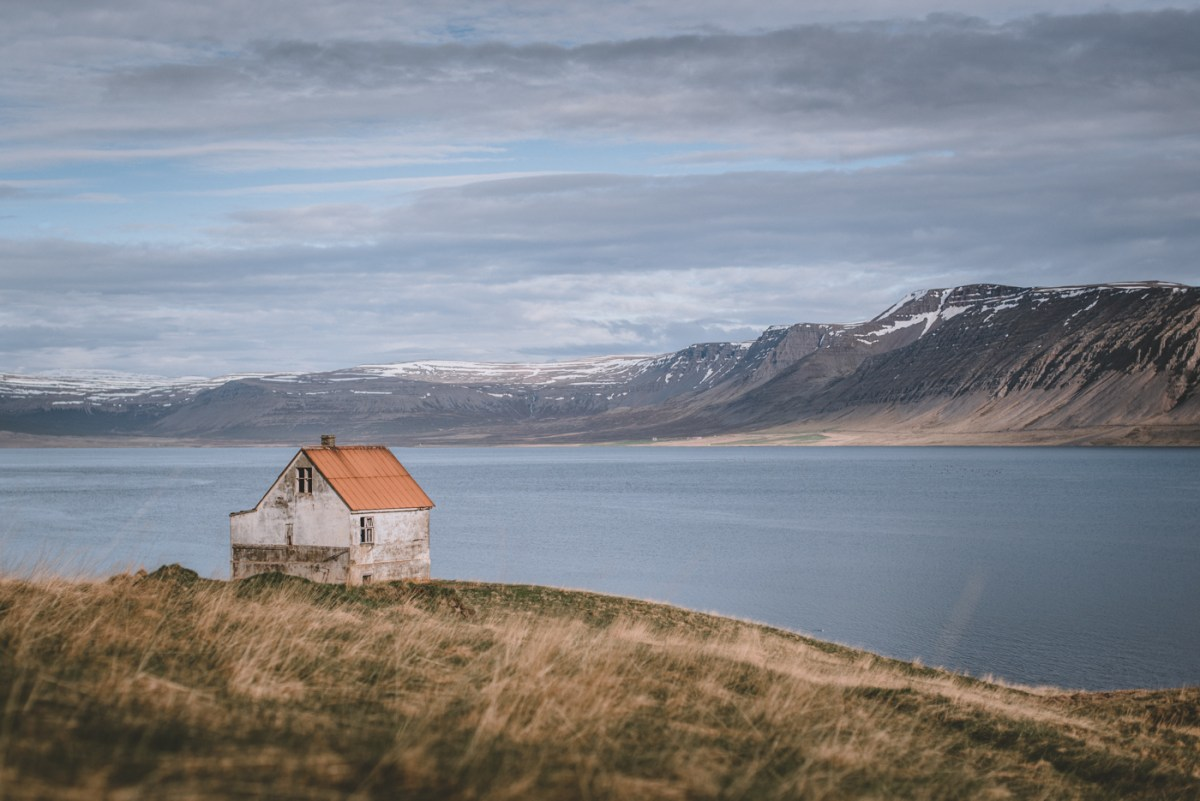 westfjords-iceland-moss-and-fog-2