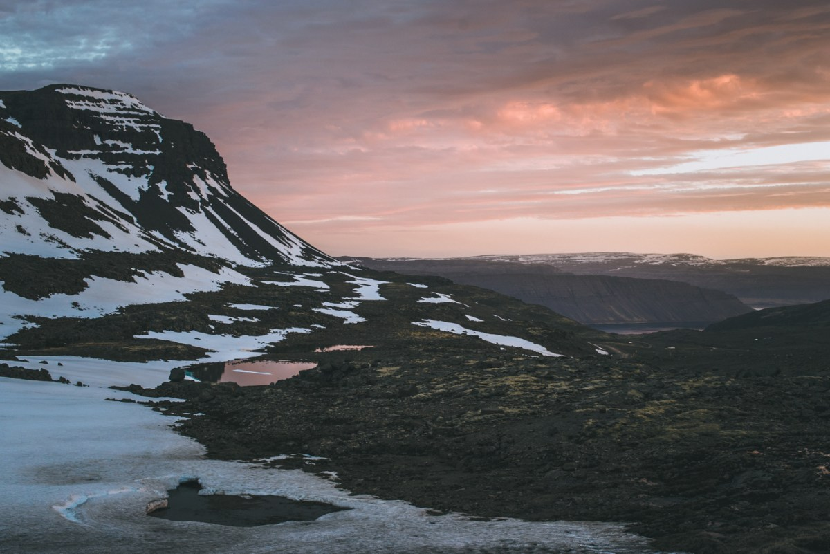 westfjords-iceland-moss-and-fog-4