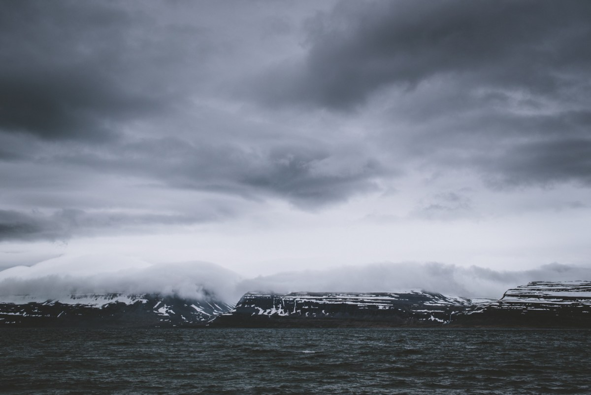westfjords-iceland-moss-and-fog-8