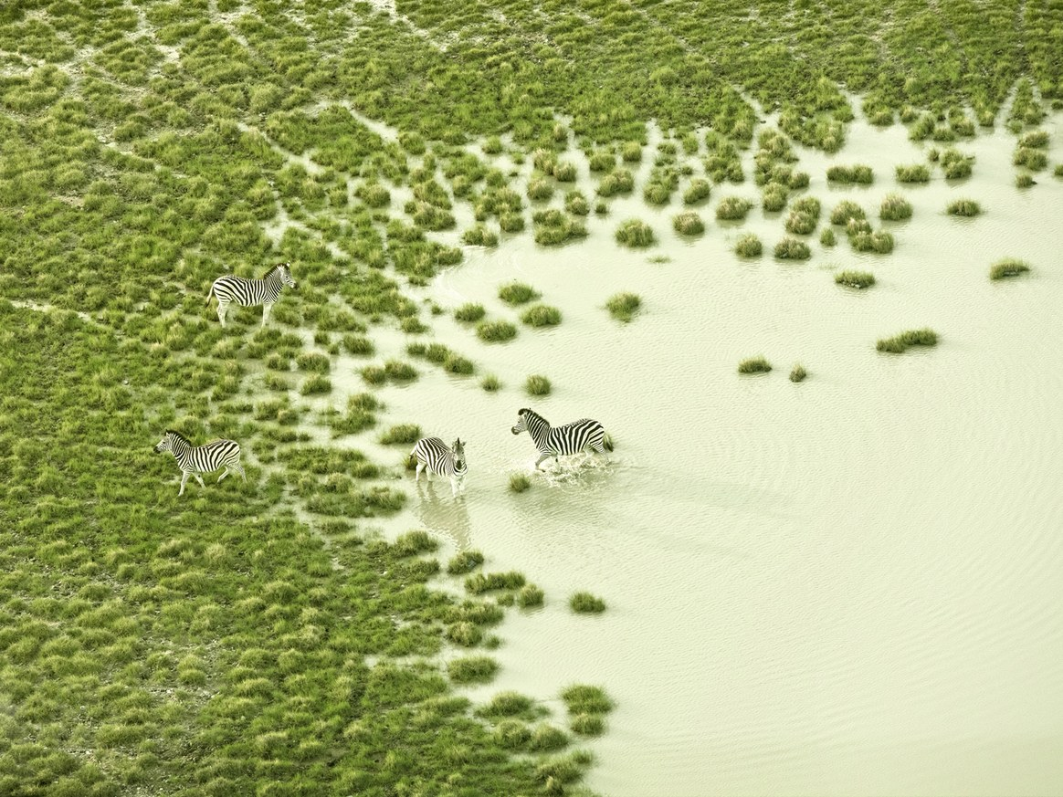 aerial-africa-moss-and-fog-1