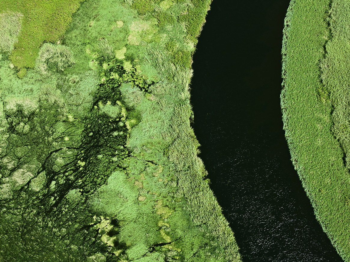 aerial-africa-moss-and-fog-3