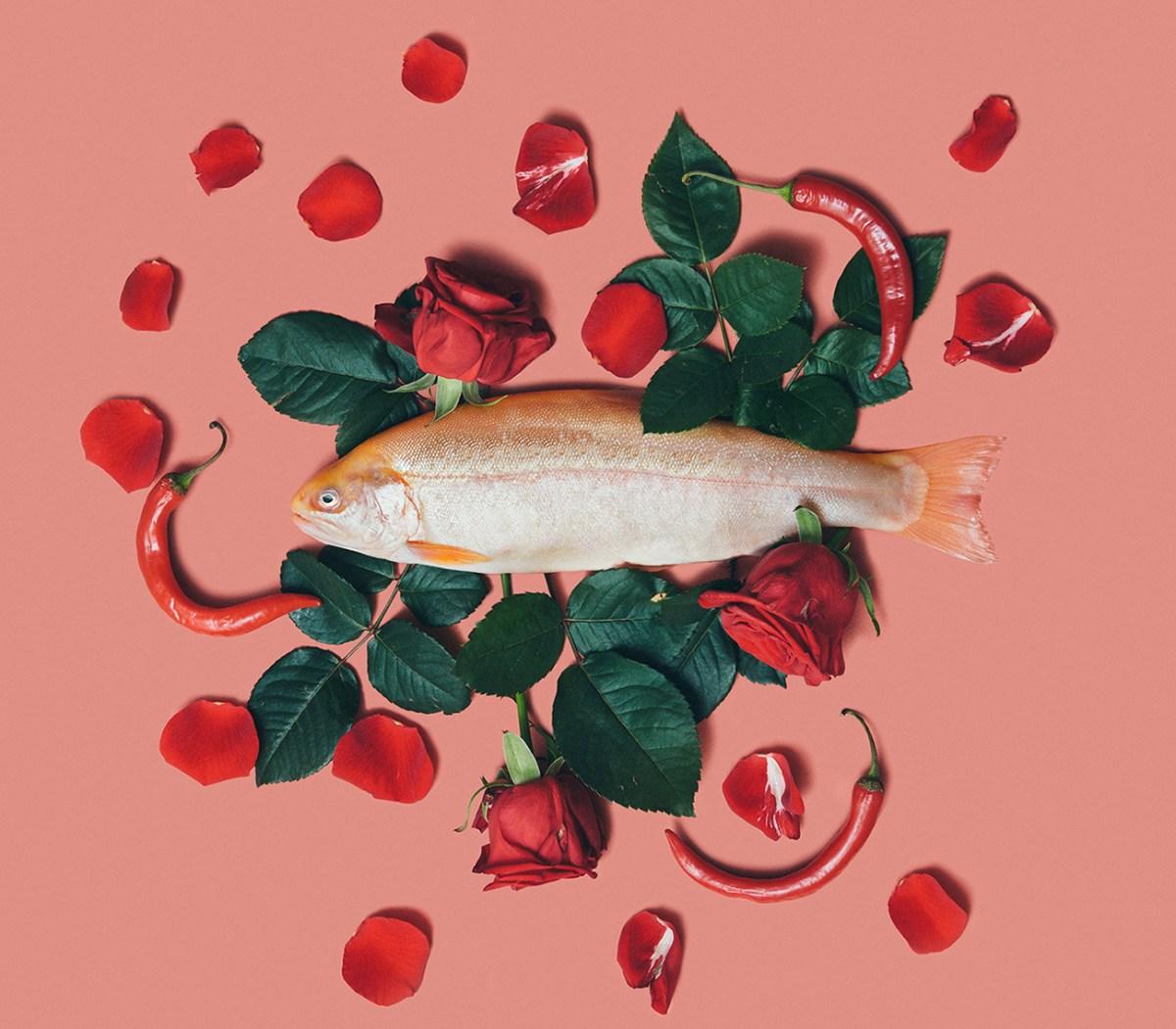 Fish + Flowers
