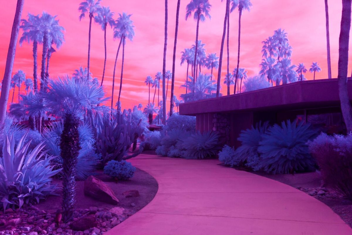 Kate Ballis Infrared California