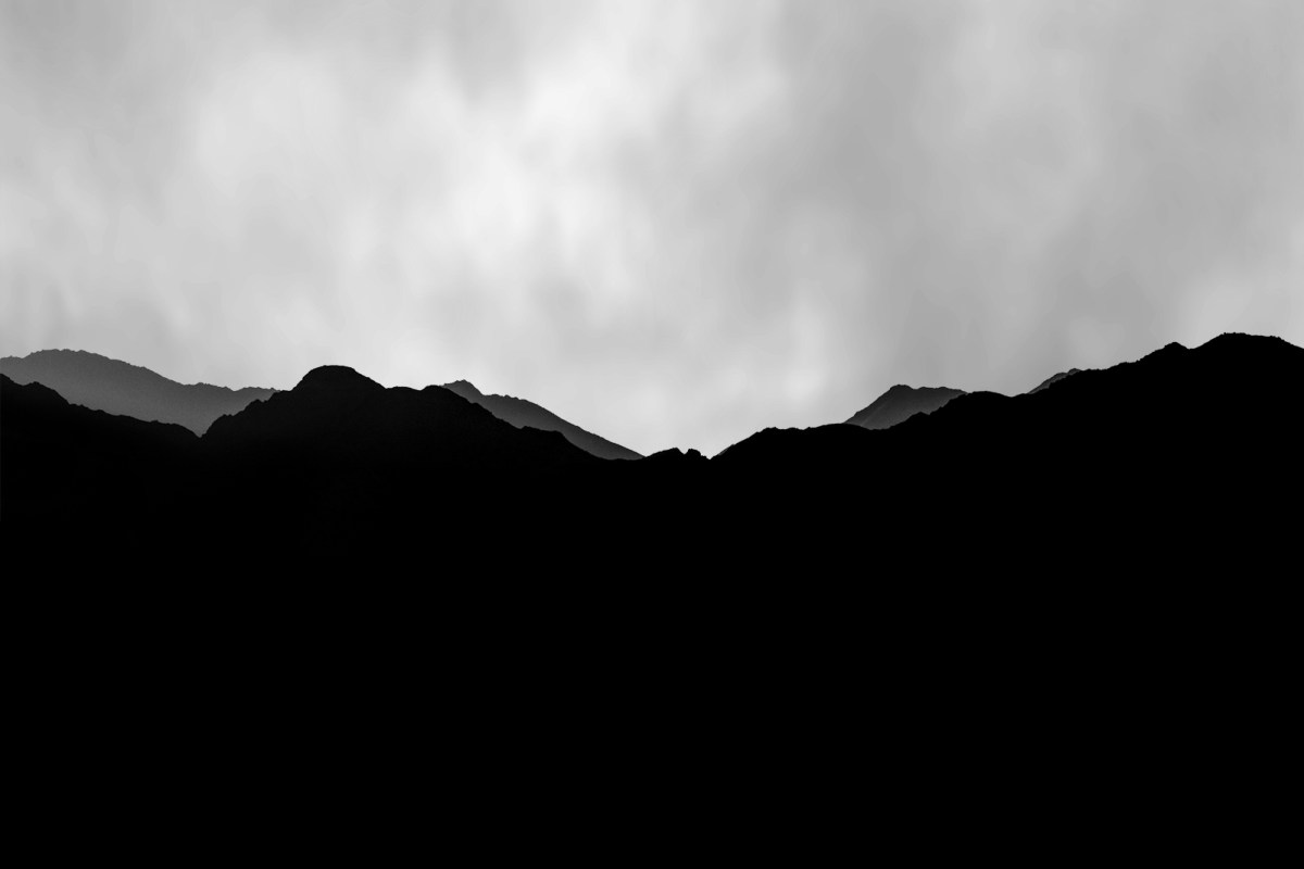 stark-and-stunning-nature-moss-and-fog-3