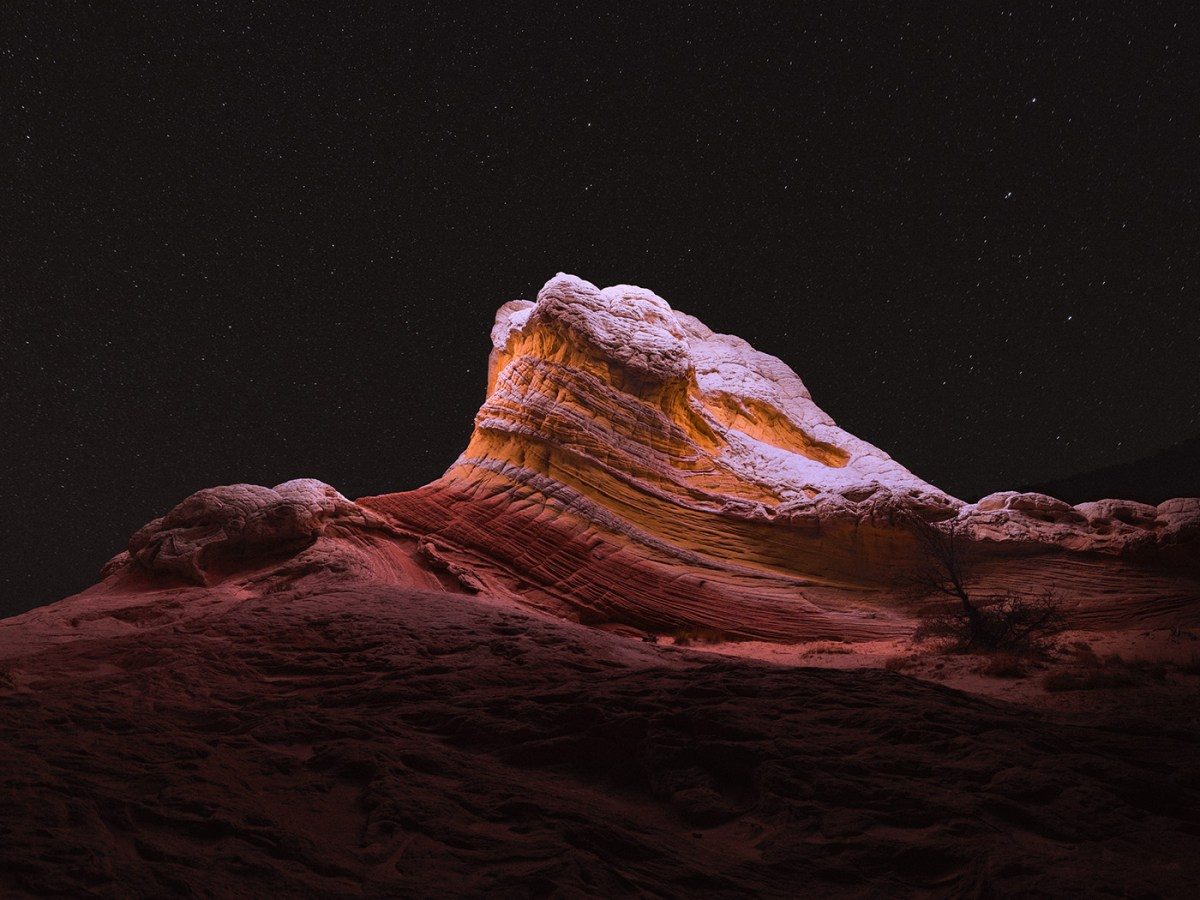 alien-landscapes-moss-and-fog-6