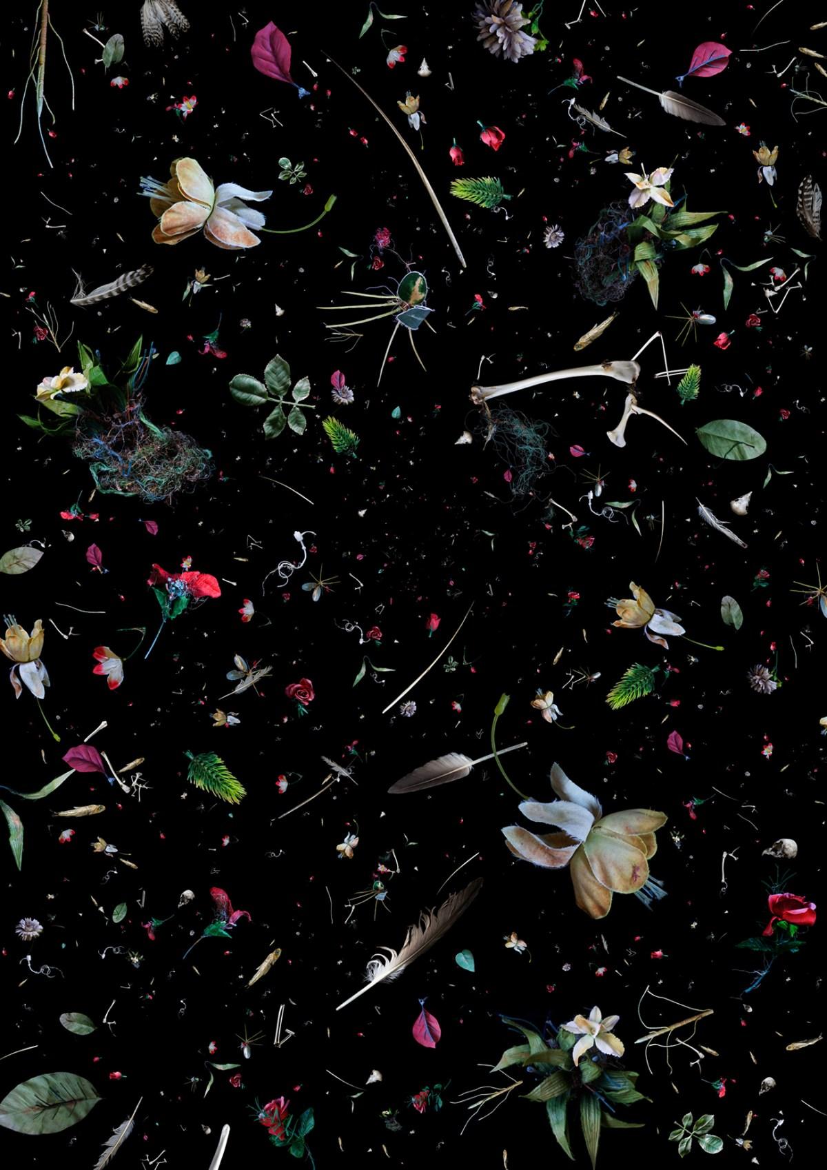 SOUP series (2011) - marine plastic debris