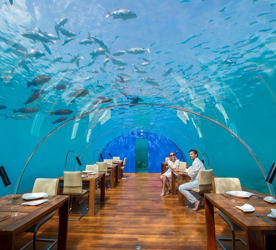couple-at-ithaa-restaurant-880x800