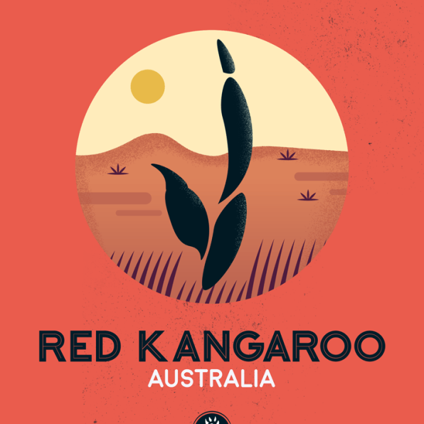 WildSideSeries__10_Kangaroo