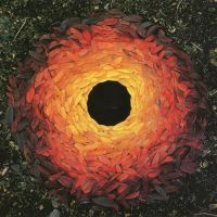 Andy Goldsworthy Fall Leaves