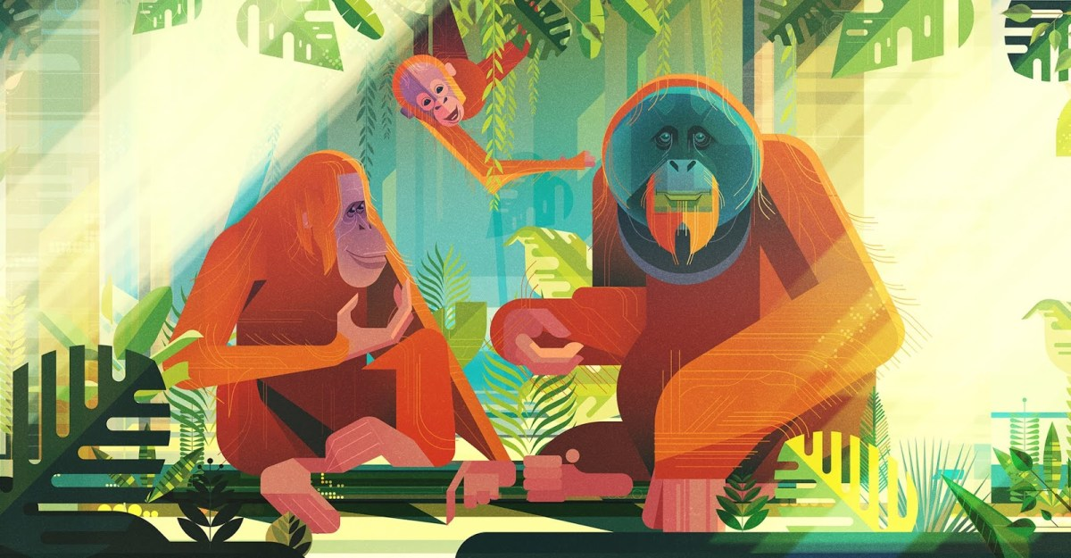 Incredible Nature Illustrations by James Gilleard