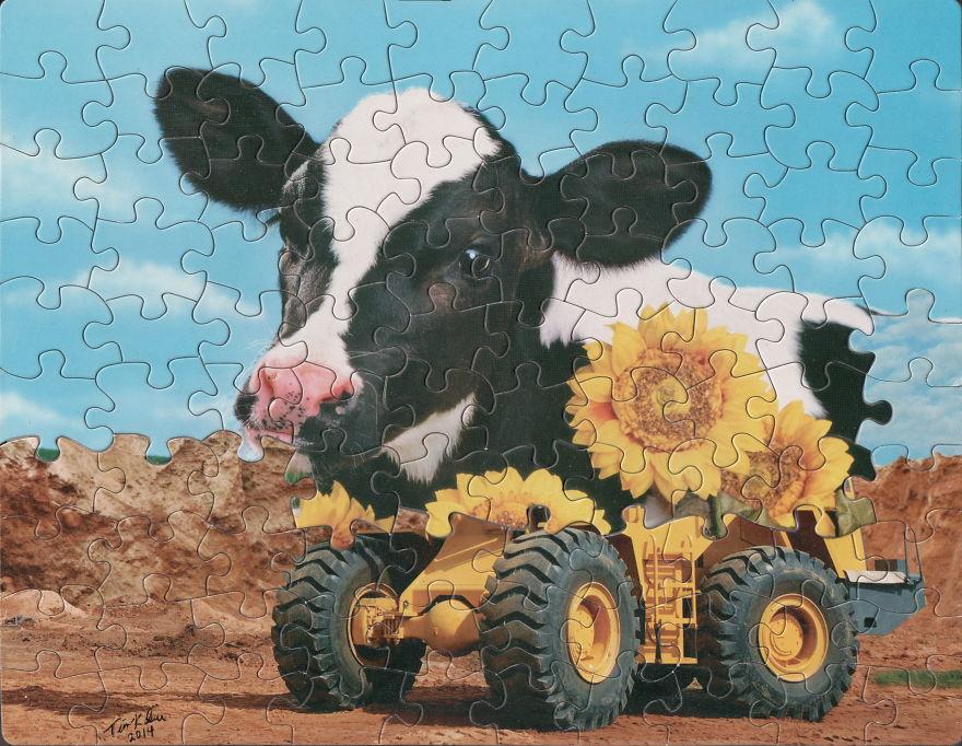 puzzle-montage-art-tim-klein-23-5bed2277ad2a8__880