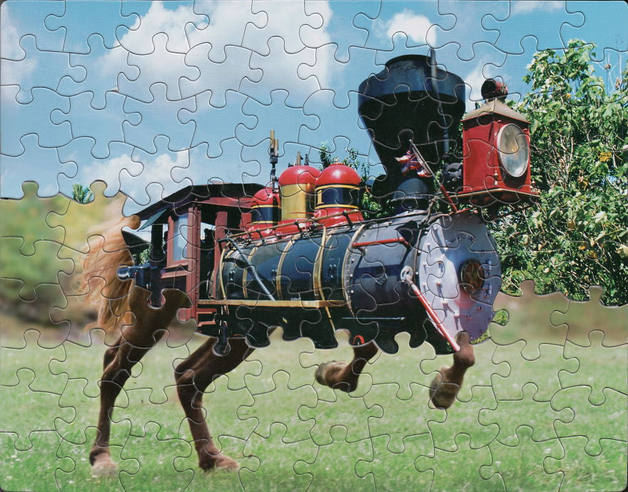 Puzzle Montages by Tim Klein