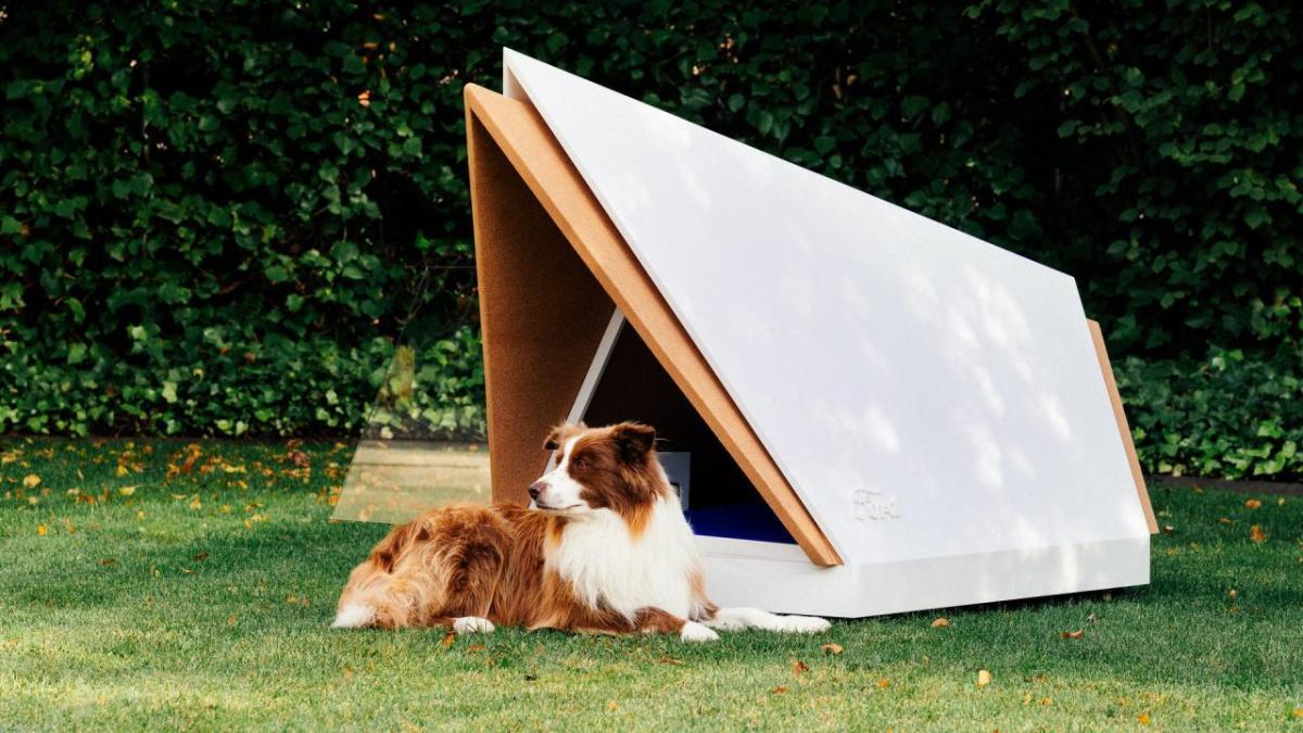 82953407-ford-dog-kennel-5