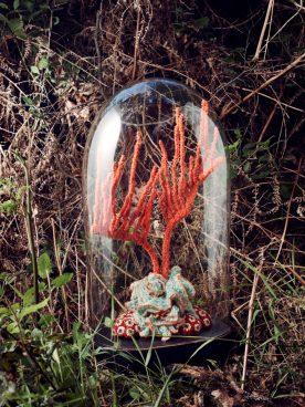 poumons-des-oceans_31_ctenocella-pectinata-zoanthus-768x1024