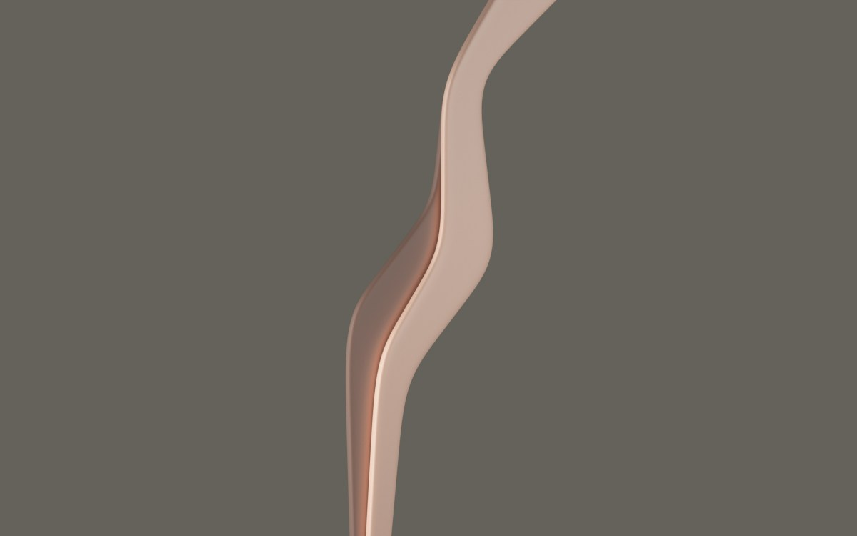 minimalist bodies