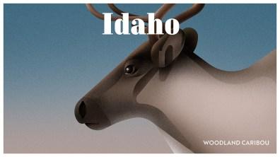 Endangered Animals Moss and Fog Idaho