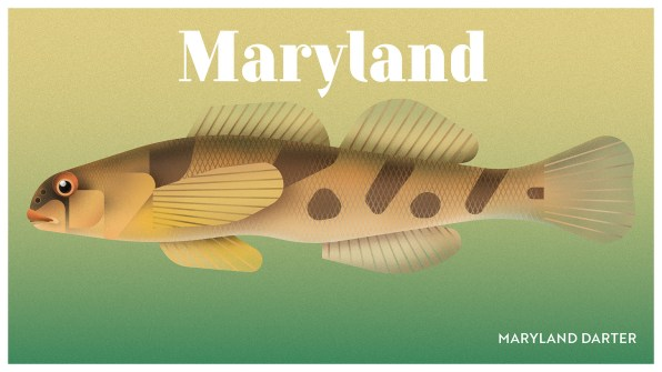 Endangered Animals Moss and Fog Maryland