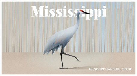 Endangered Animals Moss and Fog Mississippi