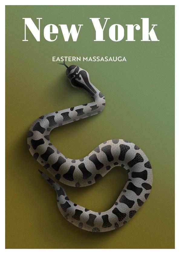 Endangered Animals Moss and Fog New York